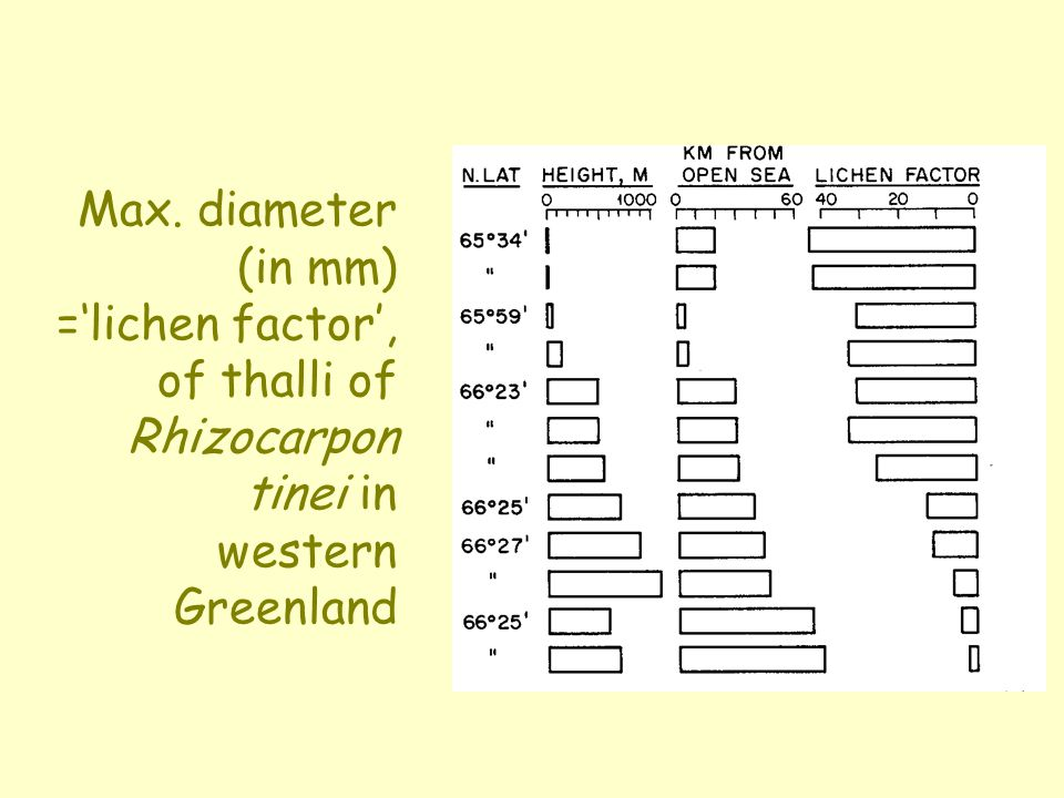 Max. diameter (in mm) =lichen factor, of thalli of Rhizocarpon tinei in western Greenland