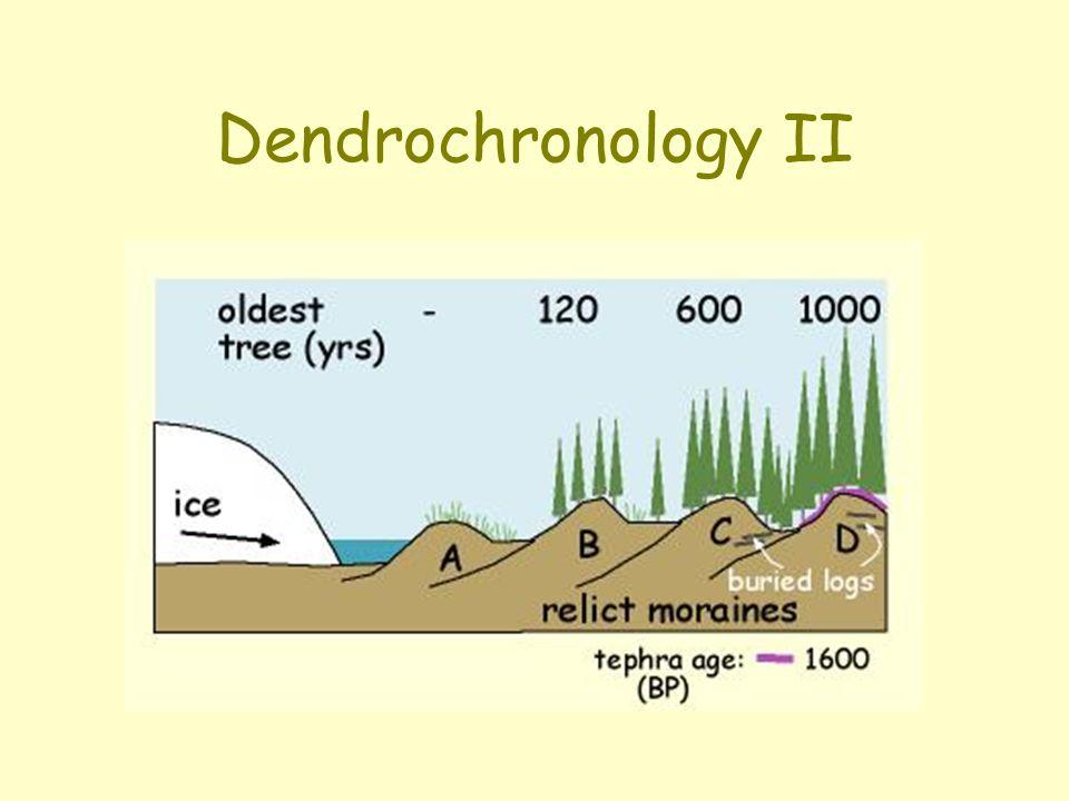 Dendrochronology II