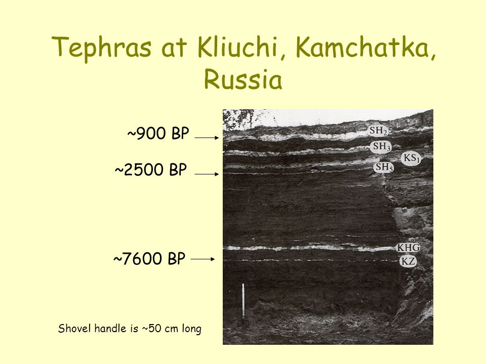 Tephras at Kliuchi, Kamchatka, Russia Shovel handle is ~50 cm long ~900 BP ~7600 BP ~2500 BP