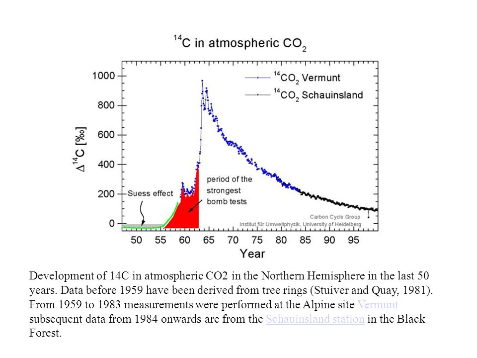 Development of 14C in atmospheric CO2 in the Northern Hemisphere in the last 50 years. Data before 1959 have been derived from tree rings (Stuiver and