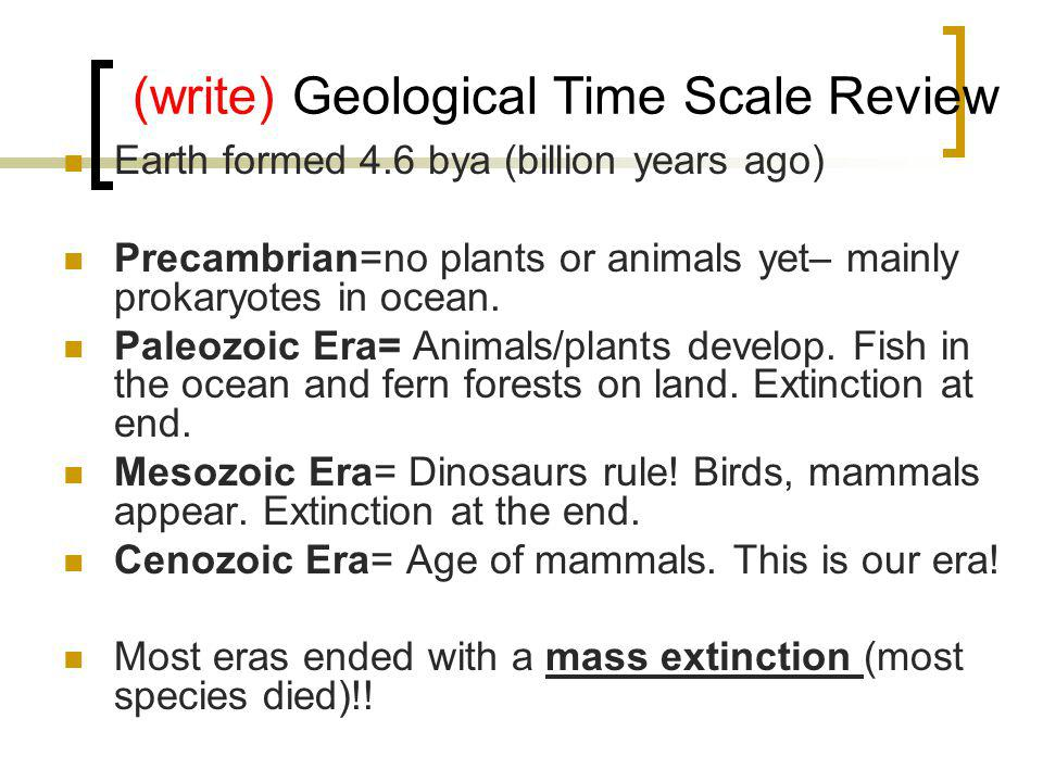 (write) Geological Time Scale Review Earth formed 4.6 bya (billion years ago) Precambrian=no plants or animals yet– mainly prokaryotes in ocean.