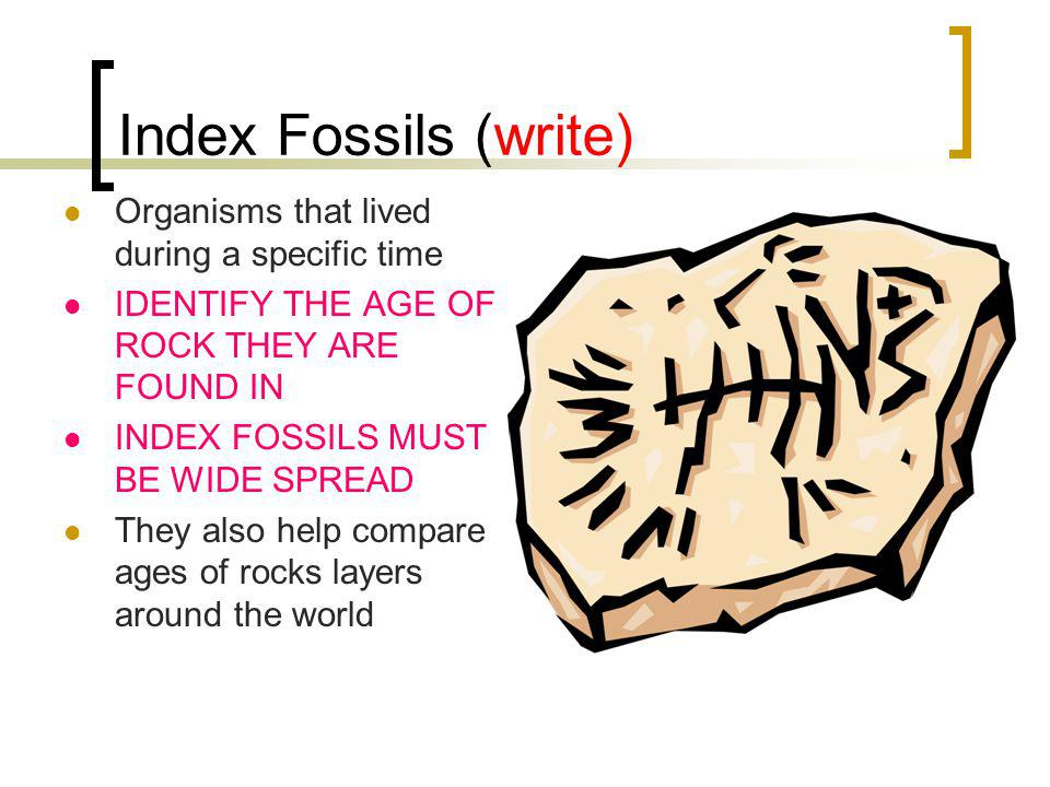 Index Fossils (write) Organisms that lived during a specific time IDENTIFY THE AGE OF ROCK THEY ARE FOUND IN INDEX FOSSILS MUST BE WIDE SPREAD They also help compare ages of rocks layers around the world