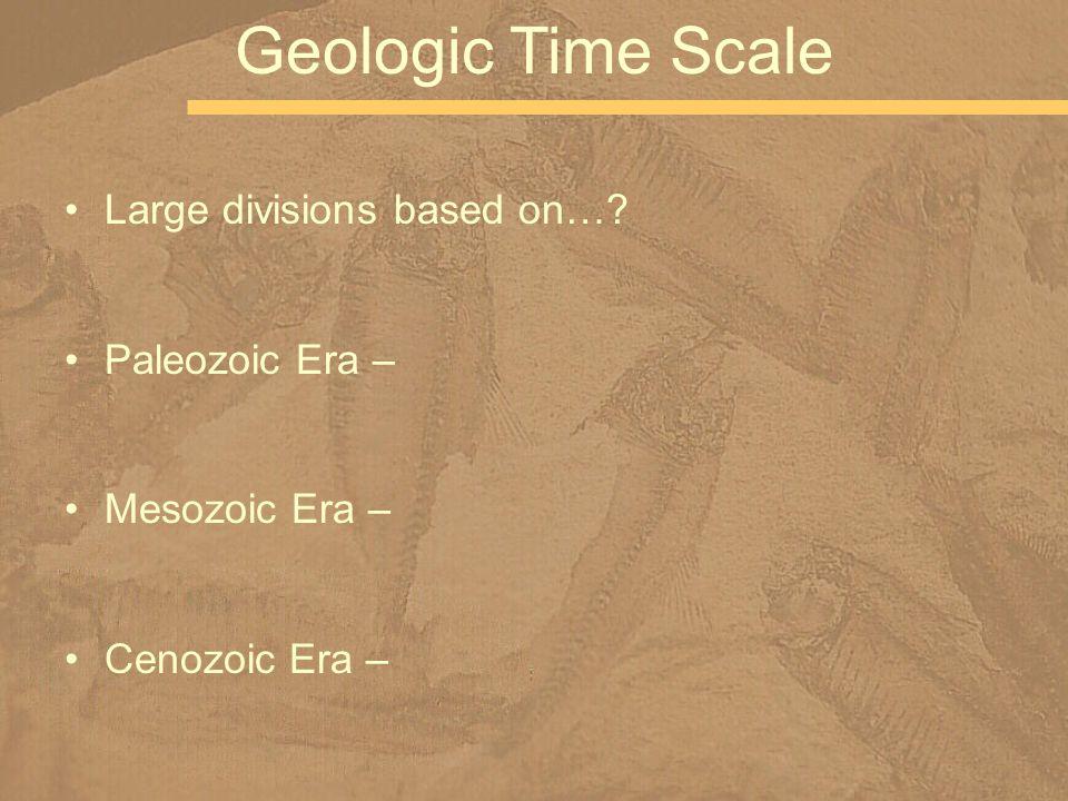 Large divisions based on…? Paleozoic Era – Mesozoic Era – Cenozoic Era – Geologic Time Scale