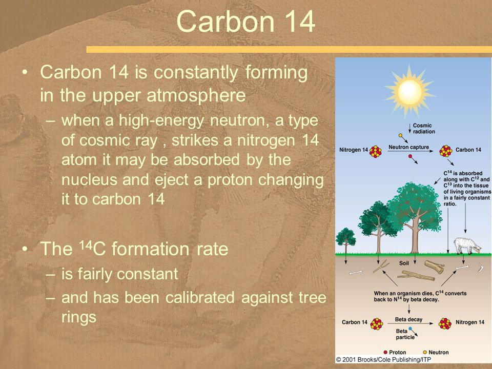 Carbon 14 is constantly forming in the upper atmosphere –when a high-energy neutron, a type of cosmic ray, strikes a nitrogen 14 atom it may be absorb