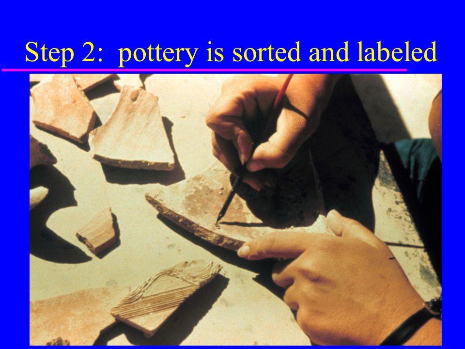 Step 3: pottery is analyzed & drawn