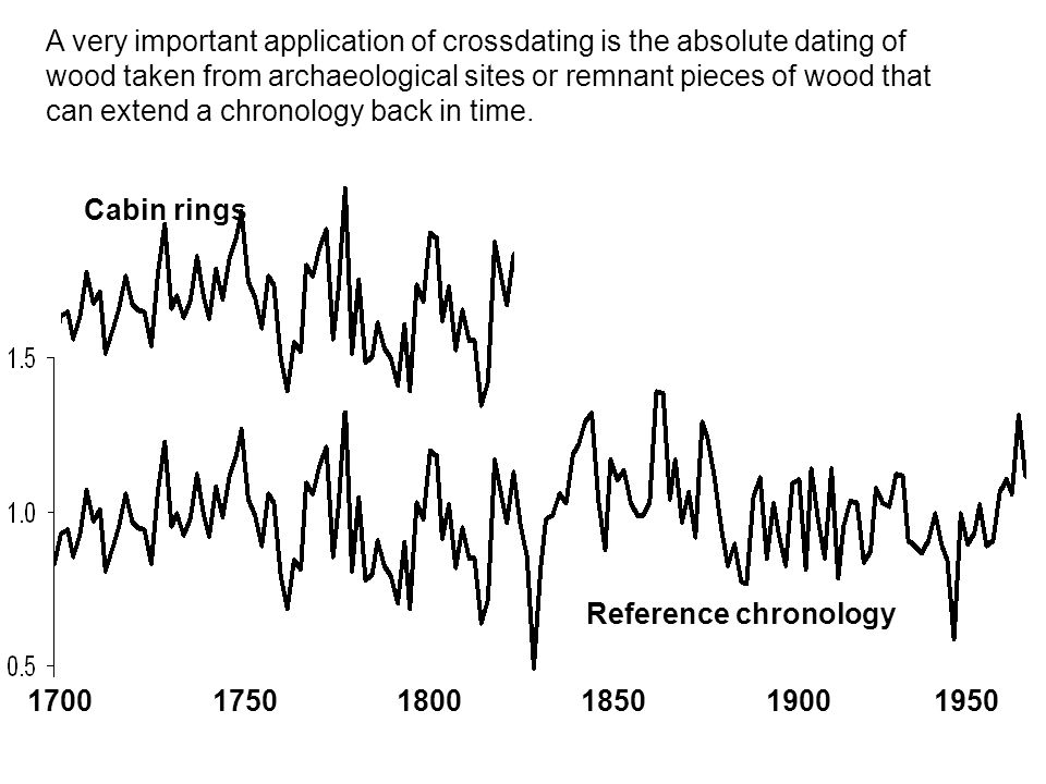 Cabin rings Reference chronology 1700 1750 1800 1850 1900 1950 A very important application of crossdating is the absolute dating of wood taken from archaeological sites or remnant pieces of wood that can extend a chronology back in time.