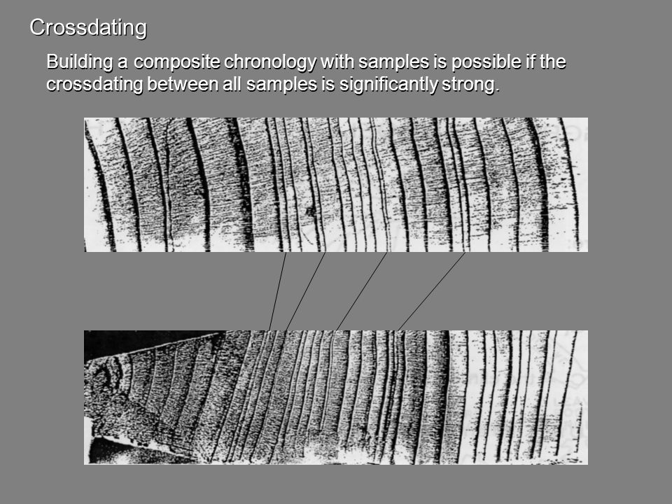 Crossdating Building a composite chronology with samples is possible if the crossdating between all samples is significantly strong. Building a compos