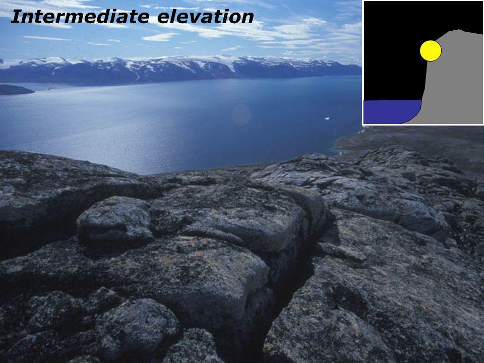 Intermediate elevation