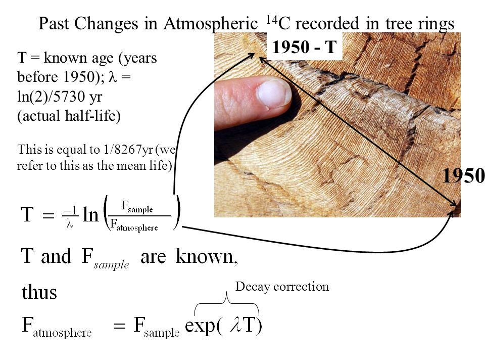 Past Changes in Atmospheric 14 C recorded in tree rings T = known age (years before 1950); = ln(2)/5730 yr (actual half-life) This is equal to 1/8267yr (we refer to this as the mean life) 1950 1950 - T Decay correction
