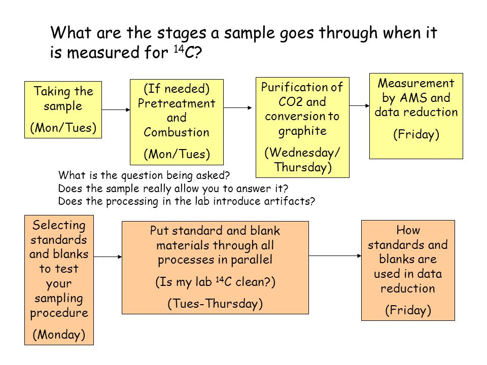 What are the stages a sample goes through when it is measured for 14 C.