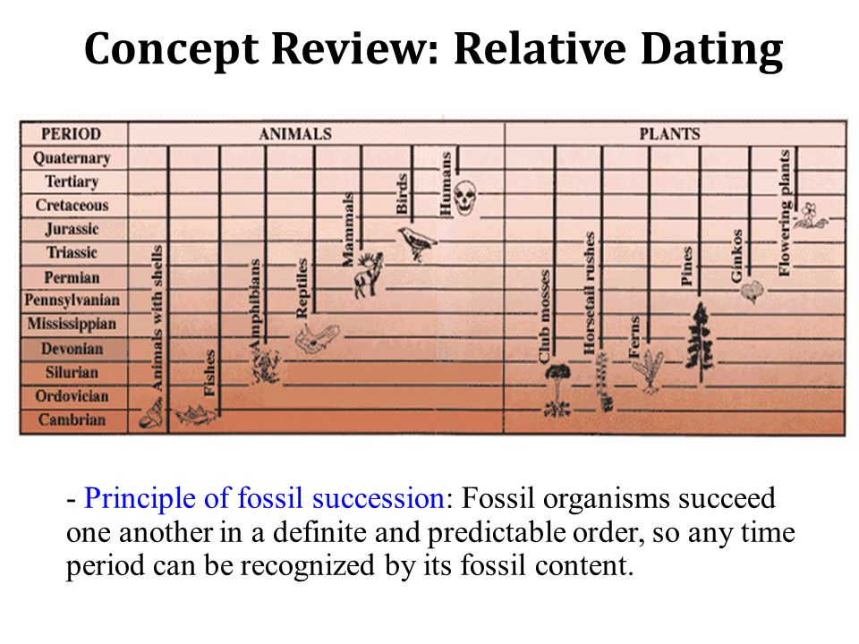 -Principle of Cross-Cutting Relationships: When a fault cuts through other rocks, or when magma intrudes and crystallizes, we can assume the intrusion