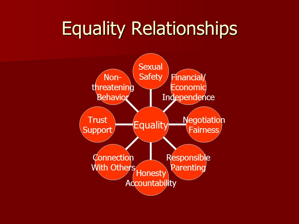 Equality Sexual Safety Financial/ Economic Independence Negotiation Fairness Responsible Parenting Honesty Accountability Connection With Others Trust