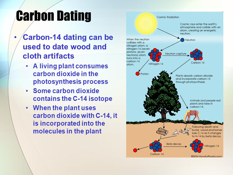 Carbon Dating Carbon-14 dating can be used to date wood and cloth artifacts A living plant consumes carbon dioxide in the photosynthesis process Some carbon dioxide contains the C-14 isotope When the plant uses carbon dioxide with C-14, it is incorporated into the molecules in the plant