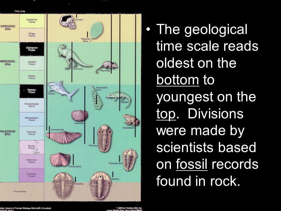 The Mesozoic Era had an inland sea in the North America, this was discovered by the fossils found and dated using Absolute Dating.