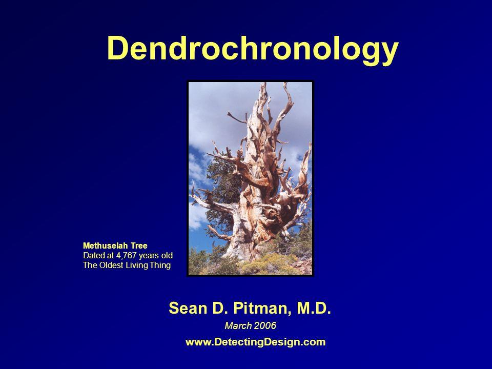 Dendrochronology Sean D.Pitman, M.D.