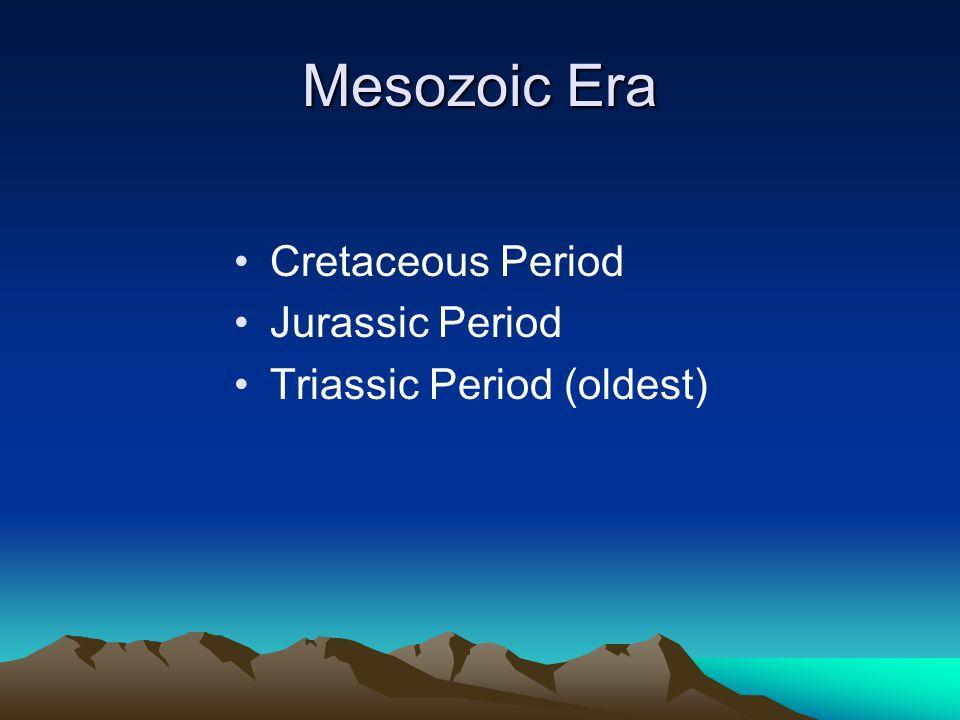 Mesozoic Era Cretaceous Period Jurassic Period Triassic Period (oldest)