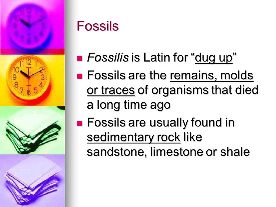 Fossils Fossils provide evidence that different organisms lived long ago Fossils provide evidence that different organisms lived long ago Fossil organisms many times do not exist on Earth anymore Fossil organisms many times do not exist on Earth anymore They have gone extinct or they have evolved They have gone extinct or they have evolved