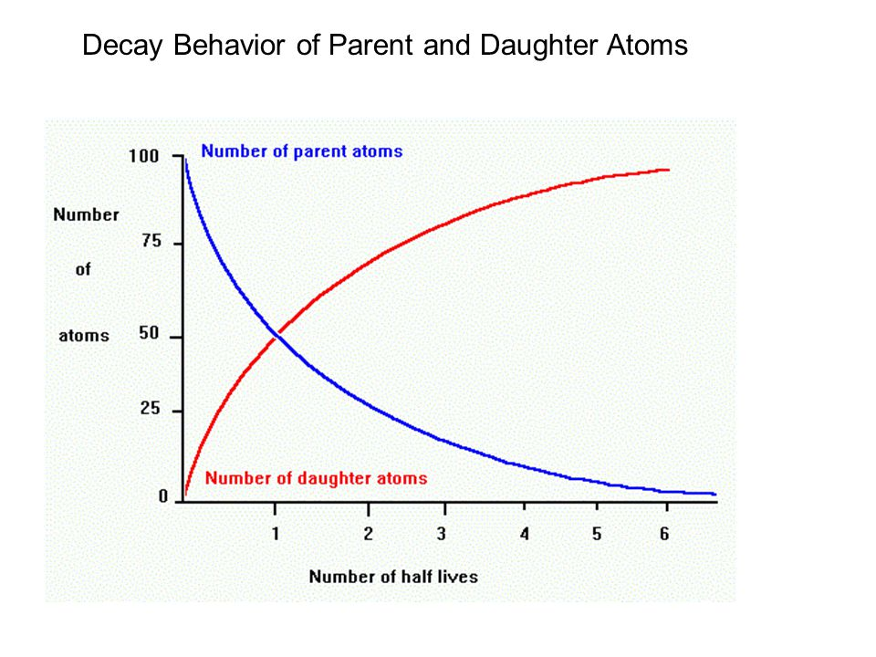 Decay Behavior of Parent and Daughter Atoms