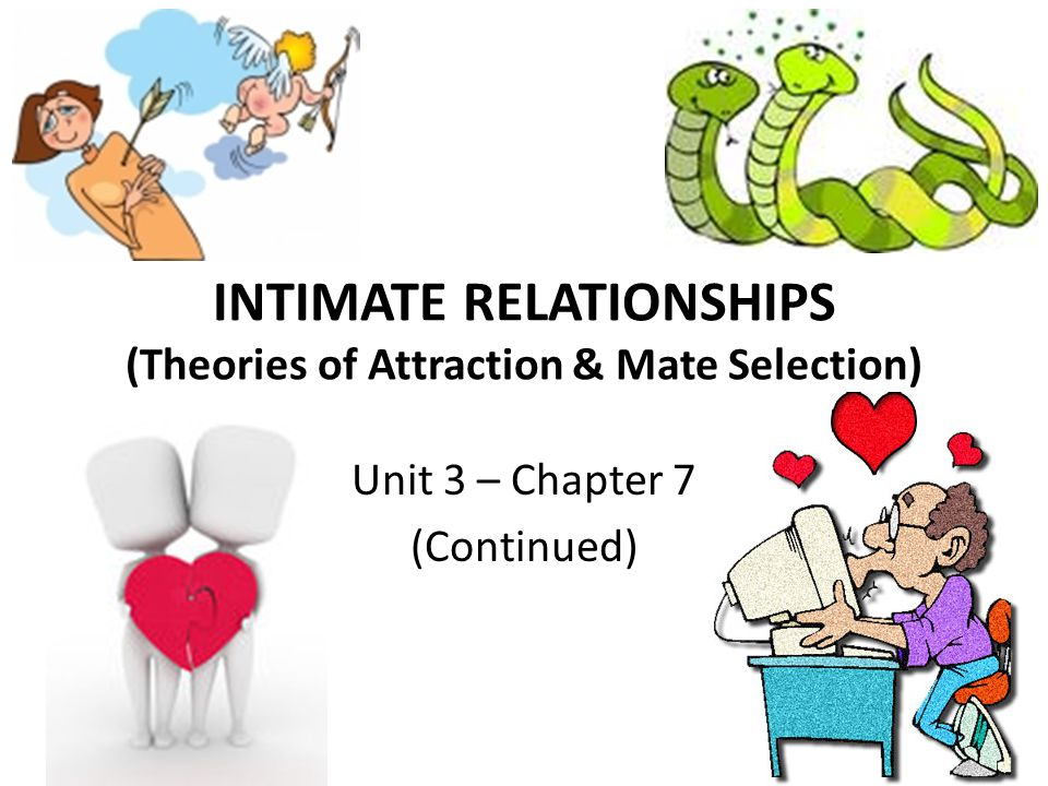 Stages of Marriage The key to surviving Stage 2 is to recognize that being honest about ones own needs develops intimacy within the relationship and enables the partners to develop reciprocal roles to meet the needs of each other and of the relationship Discussing with ones partner how to solve problems reflects mutual interdependence and a commitment to the relationship
