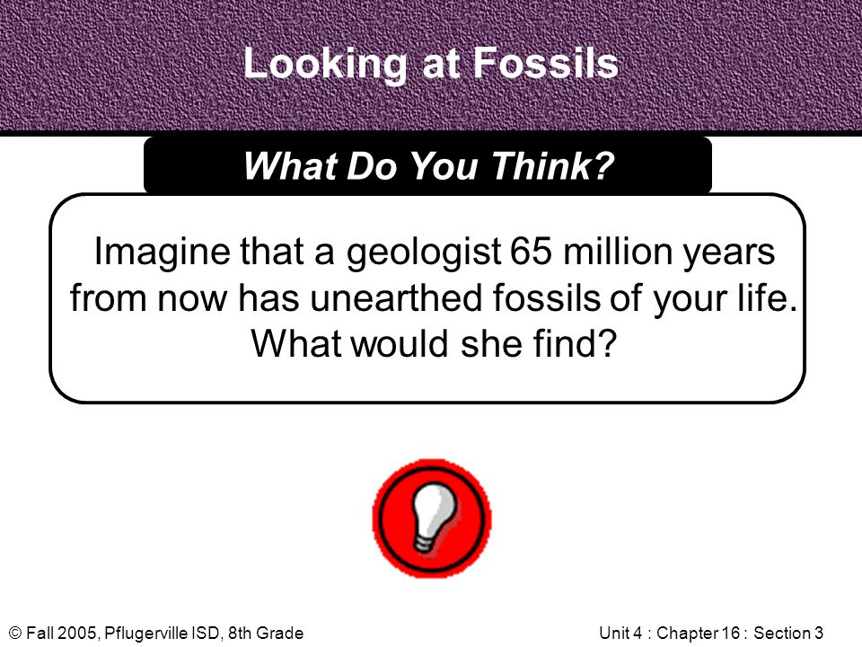 © Fall 2005, Pflugerville ISD, 8th GradeUnit 4 : Chapter 16 : Section 3 Looking at Fossils Imagine that a geologist 65 million years from now has unea