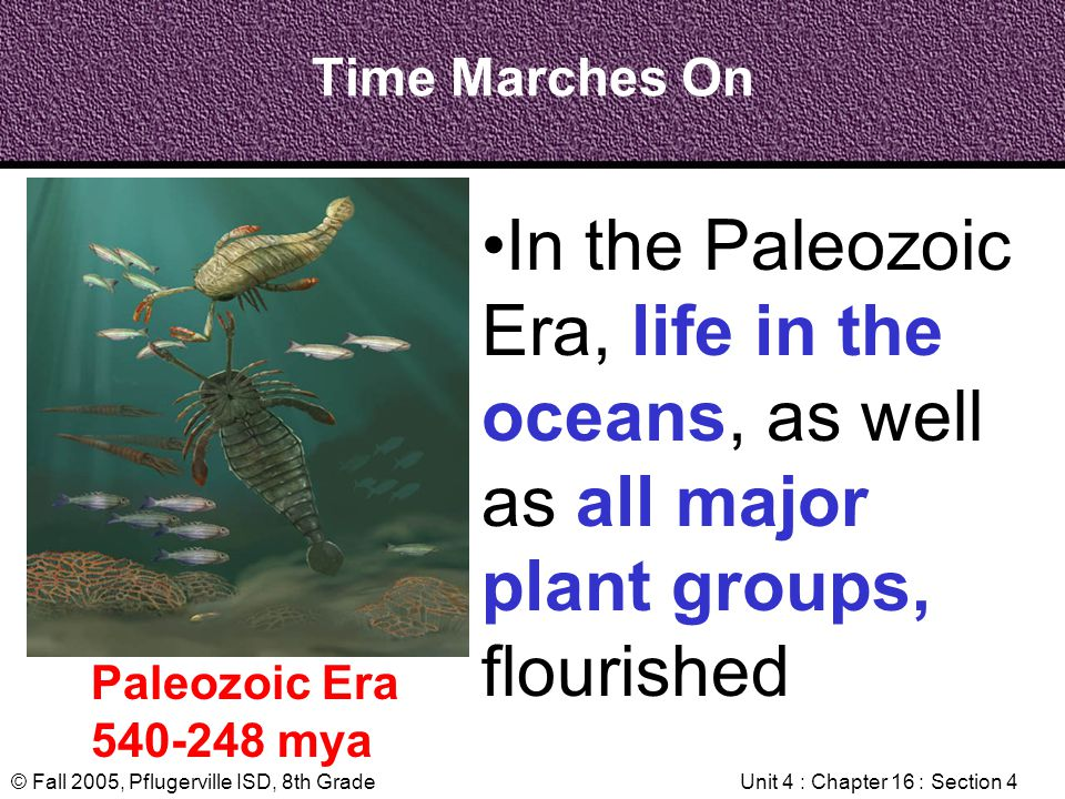 © Fall 2005, Pflugerville ISD, 8th GradeUnit 4 : Chapter 16 : Section 4 Time Marches On Paleozoic Era 540-248 mya In the Paleozoic Era, life in the oc