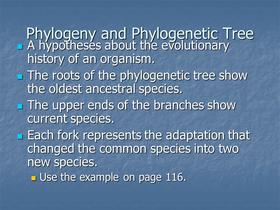 Phylogeny and Phylogenetic Tree A hypotheses about the evolutionary history of an organism.