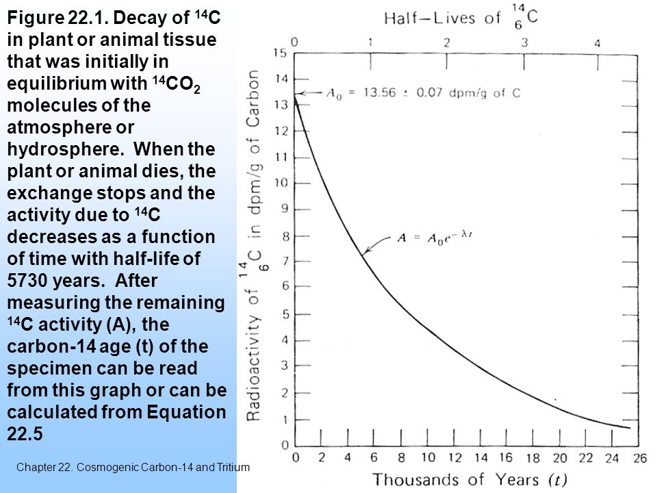 Figure 22.1. Decay of 14 C in plant or animal tissue that was initially in equilibrium with 14 CO 2 molecules of the atmosphere or hydrosphere. When t