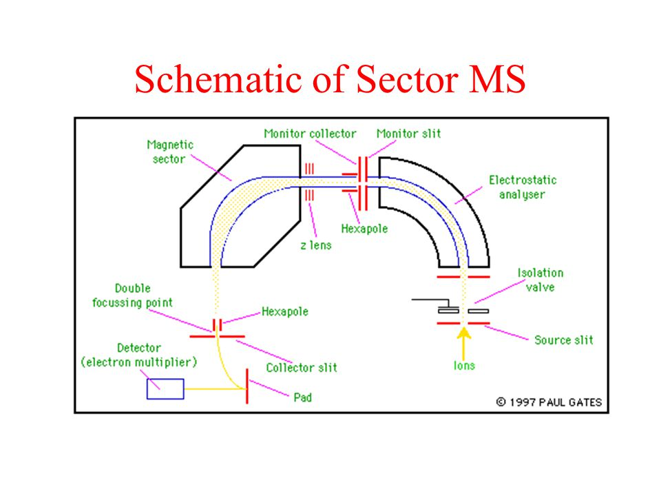 Schematic of Sector MS