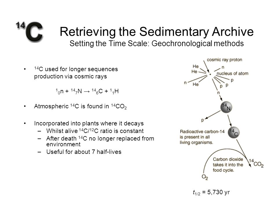 Retrieving the Sedimentary Archive Setting the Time Scale: Geochronological methods 14 C used for longer sequences production via cosmic rays 1 0 n +