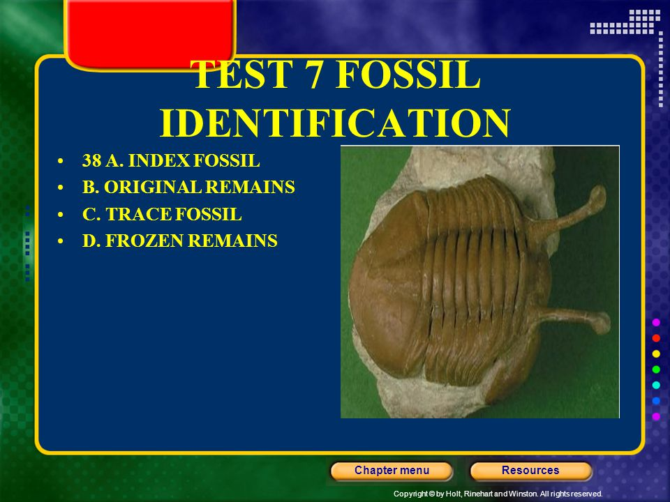 Copyright © by Holt, Rinehart and Winston. All rights reserved. ResourcesChapter menu TEST 7 FOSSIL IDENTIFICATION 38 A. INDEX FOSSIL B. ORIGINAL REMA