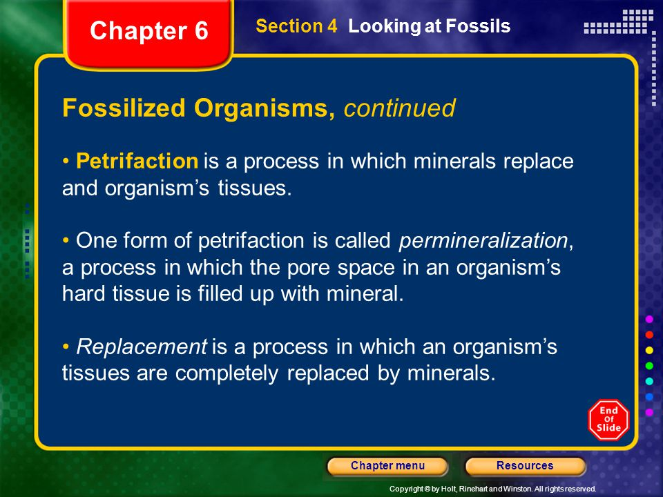 Copyright © by Holt, Rinehart and Winston. All rights reserved. ResourcesChapter menu Fossilized Organisms, continued Petrifaction is a process in whi