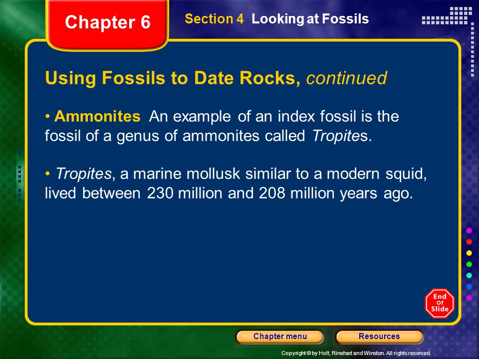 Copyright © by Holt, Rinehart and Winston. All rights reserved. ResourcesChapter menu Using Fossils to Date Rocks, continued Ammonites An example of a
