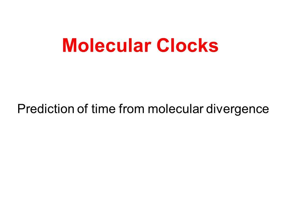 Molecular Clocks Prediction of time from molecular divergence