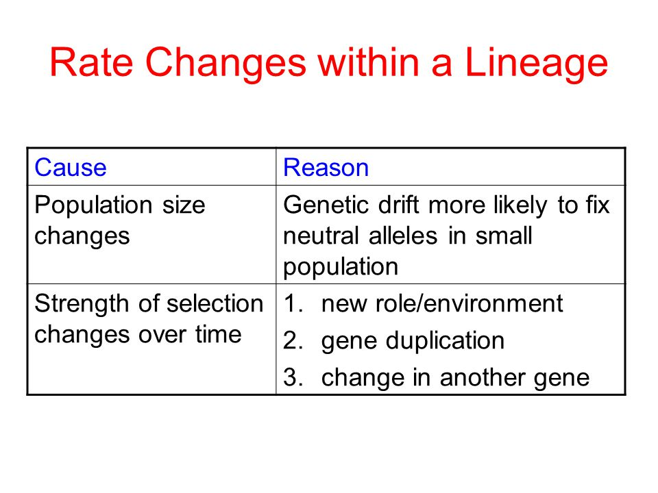 CauseReason Population size changes Genetic drift more likely to fix neutral alleles in small population Strength of selection changes over time 1.new