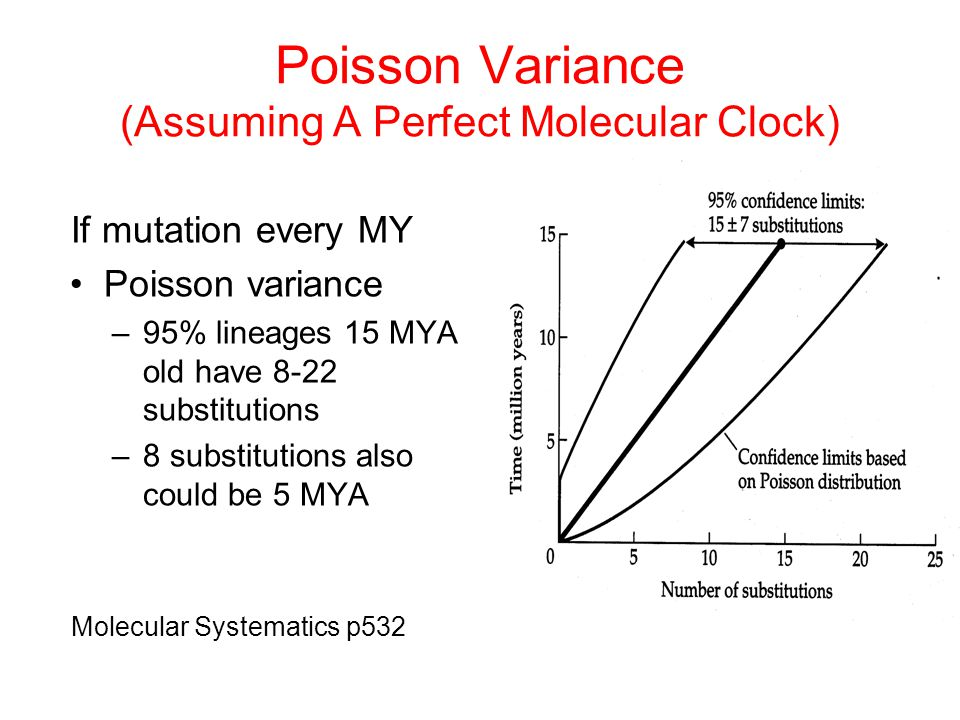 Poisson Variance (Assuming A Perfect Molecular Clock) If mutation every MY Poisson variance –95% lineages 15 MYA old have 8-22 substitutions –8 substi
