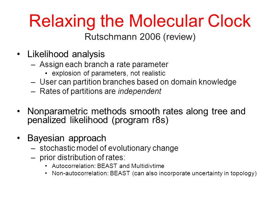 Relaxing the Molecular Clock Rutschmann 2006 (review) Likelihood analysis –Assign each branch a rate parameter explosion of parameters, not realistic