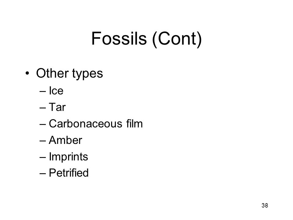 38 Fossils (Cont) Other types –Ice –Tar –Carbonaceous film –Amber –Imprints –Petrified