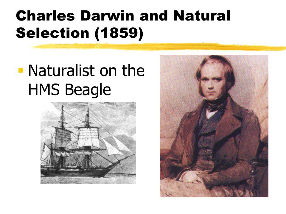 Charles Darwin and Natural Selection (1859) Naturalist on the HMS Beagle