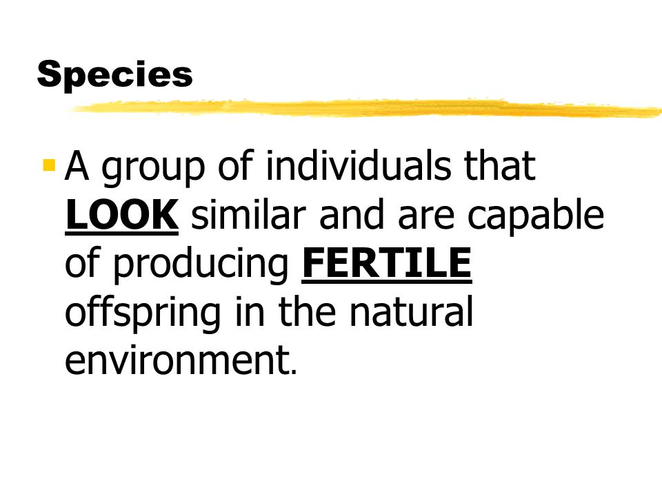 Species A group of individuals that LOOK similar and are capable of producing FERTILE offspring in the natural environment.