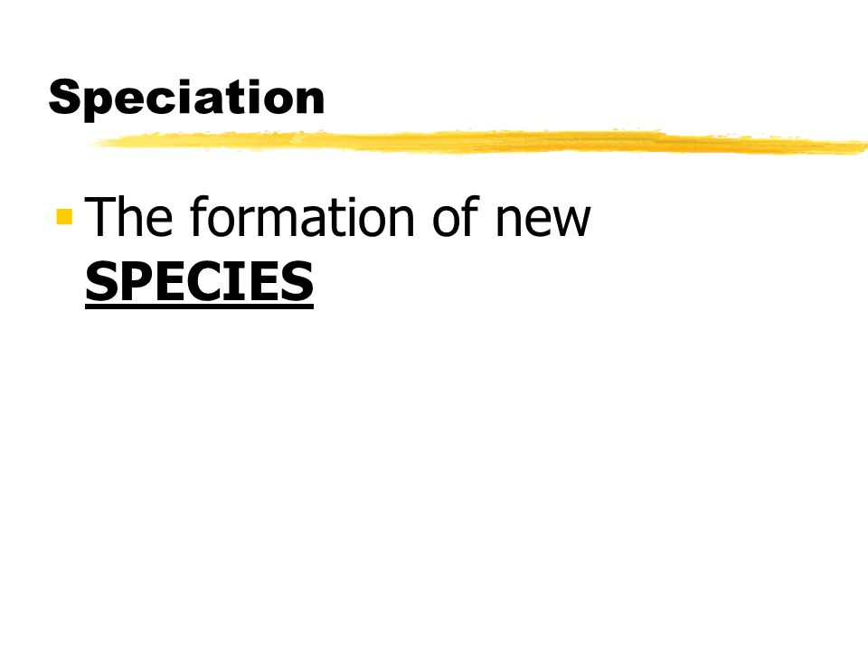 Speciation The formation of new SPECIES