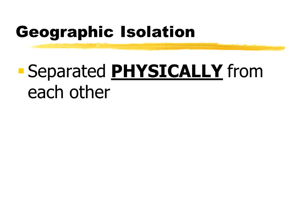 Geographic Isolation Separated PHYSICALLY from each other
