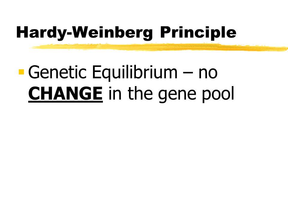 Hardy-Weinberg Principle Genetic Equilibrium – no CHANGE in the gene pool
