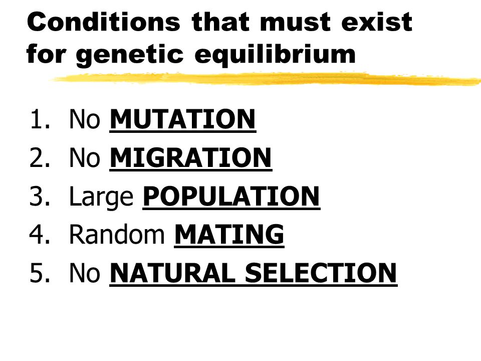 Conditions that must exist for genetic equilibrium 1. No MUTATION 2. No MIGRATION 3. Large POPULATION 4. Random MATING 5. No NATURAL SELECTION