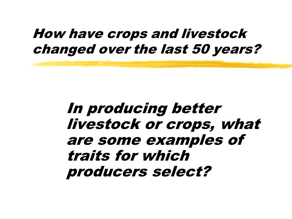 How have crops and livestock changed over the last 50 years? In producing better livestock or crops, what are some examples of traits for which produc