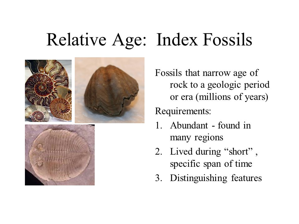 Describe How The Geologic Column Is Used In Relative Dating