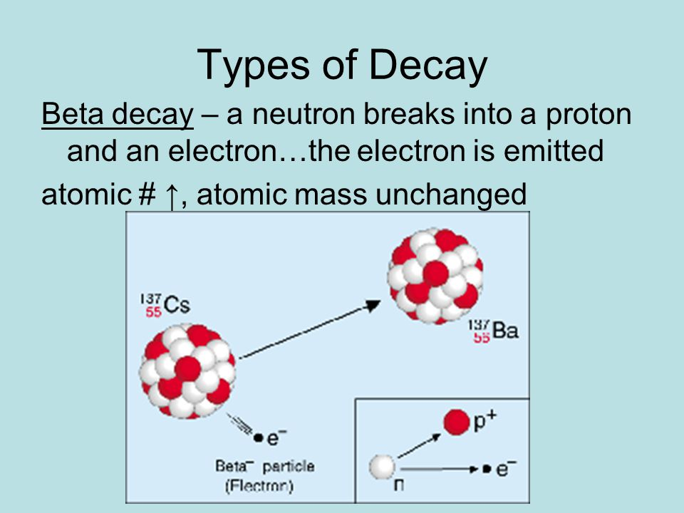 Types of Decay Electron capture – one electron is captured by the nucleus Atomic number increases by 1