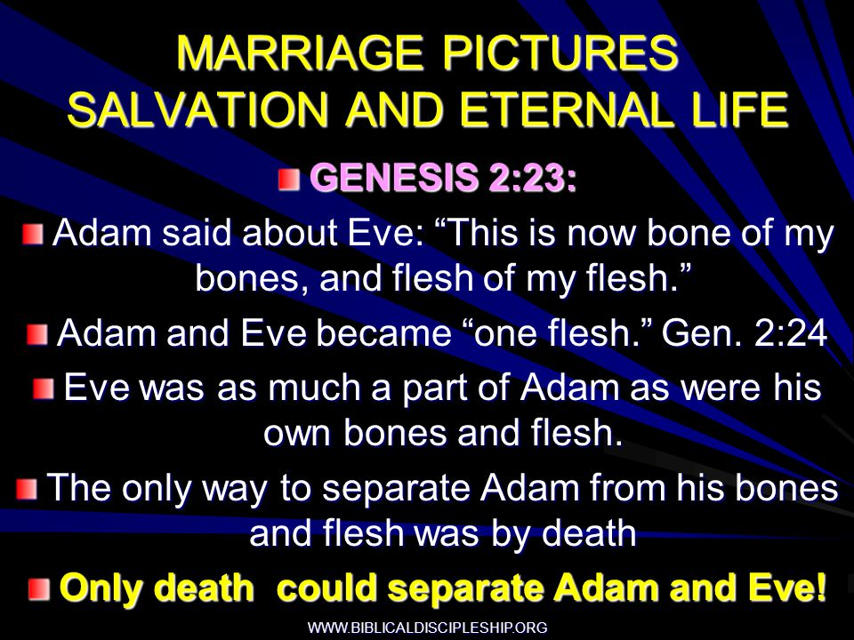 WWW.BIBLICALDISCIPLESHIP.ORG MARRIAGE PICTURES SALVATION AND ETERNAL LIFE GENESIS 2:23: Adam said about Eve: This is now bone of my bones, and flesh o