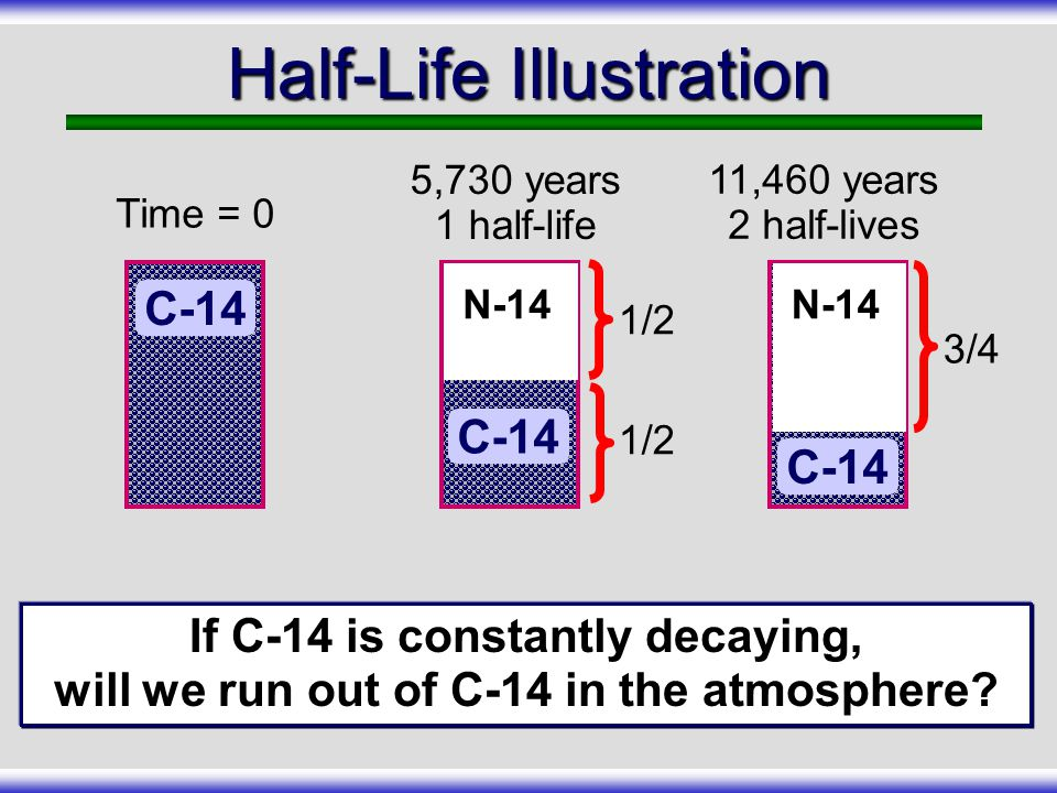 How Carbon-14 Is Produced Cosmic Rays (radiation) Collision with atmosphere (N14) Forms C-14 C-14 combines with oxygen to form carbon dioxide (CO 2 )