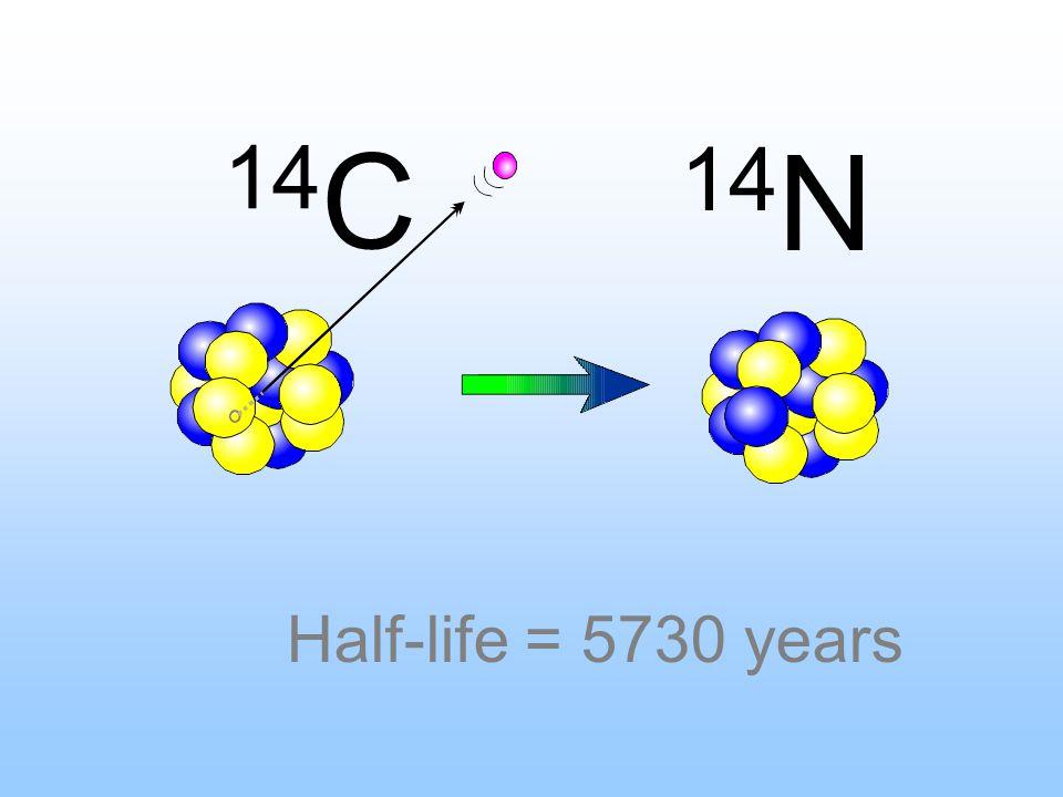 14 C 14 N Half-life = 5730 years