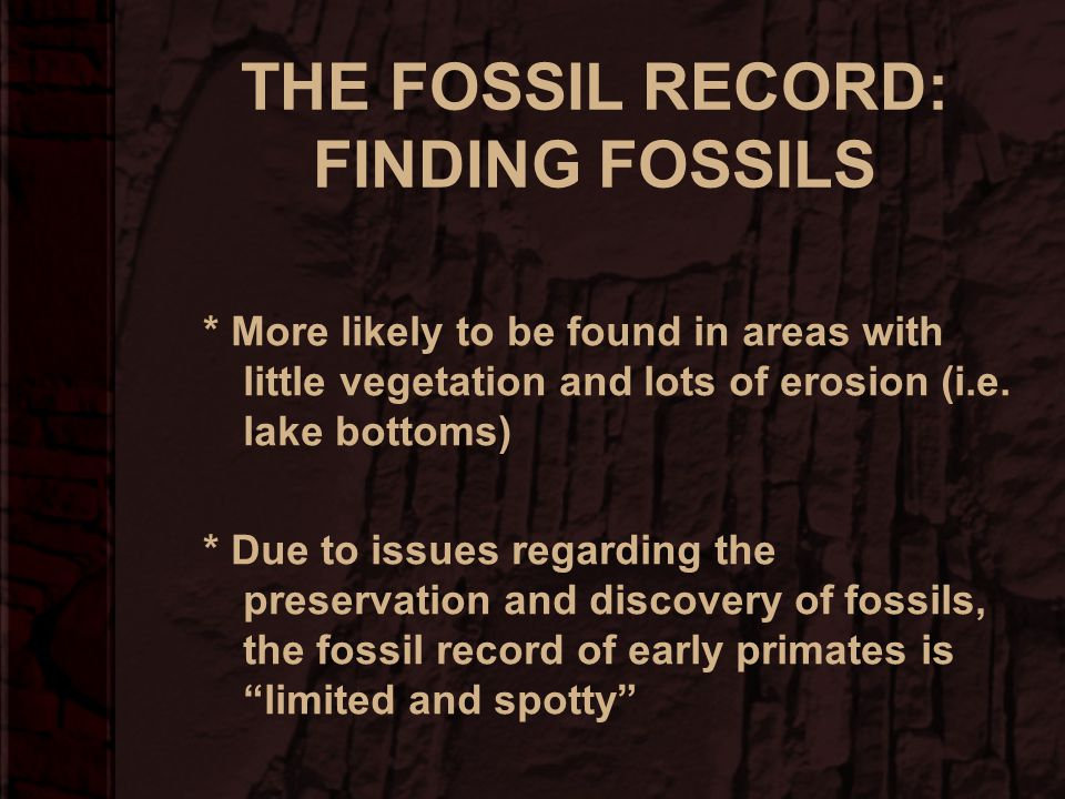 THE FOSSIL RECORD: PRESERVATION –Not a representative sample of all of the species that have lived on earth –Some species and body parts preserve bett